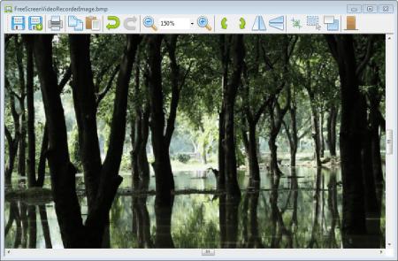 Free Screen Video Recorder главное окно